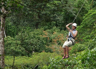 Canopy or Zip lining Tour